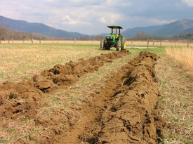 Plowing rows for native grass seed planting, Cades Cove.