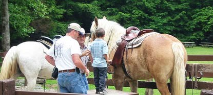 The stables in Cades Cove offer horse riding from mid-March through early November.