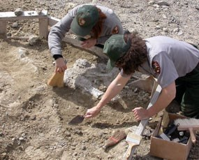 Park Rangers work at fossil site.