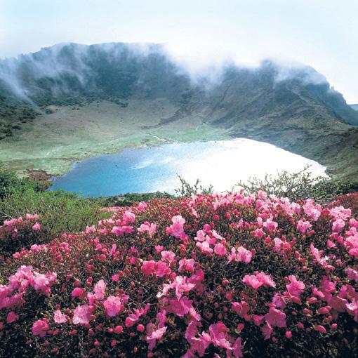 Bildergebnis für jeju volcanic island and lava tubes