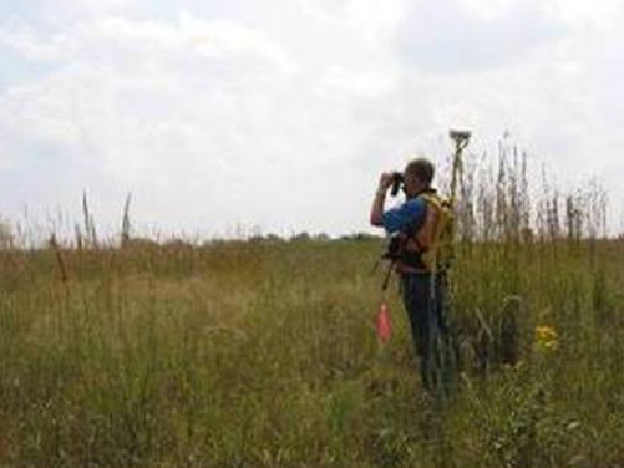 grasslands plants and animals for kids