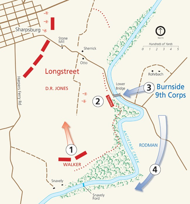 Map of fighting at Burnside Bridge