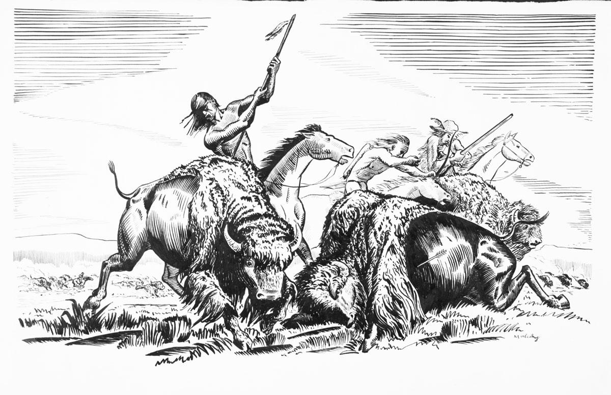 Buffalo hunt essay