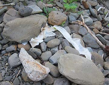 Used tissue paper partially covered by some rocks.