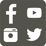 grey box with 4 social media icons
