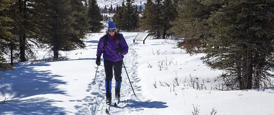 a woman on cross country skis heads up a snowy trail surrounded by trees
