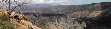 View from Mancos Canyon Overlook