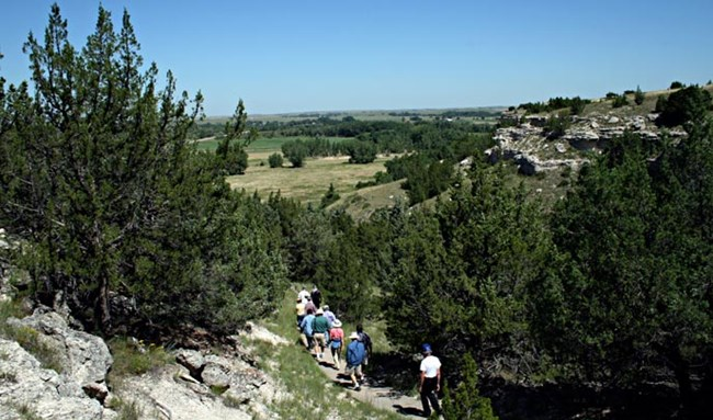Hikers walk a path surrounded by pine trees on the side of a hill in Ash Hollow, Nebraska.