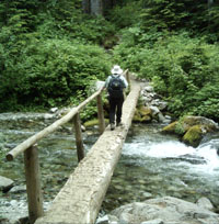 A hiker crosses a log bridge over Cataract Creek.