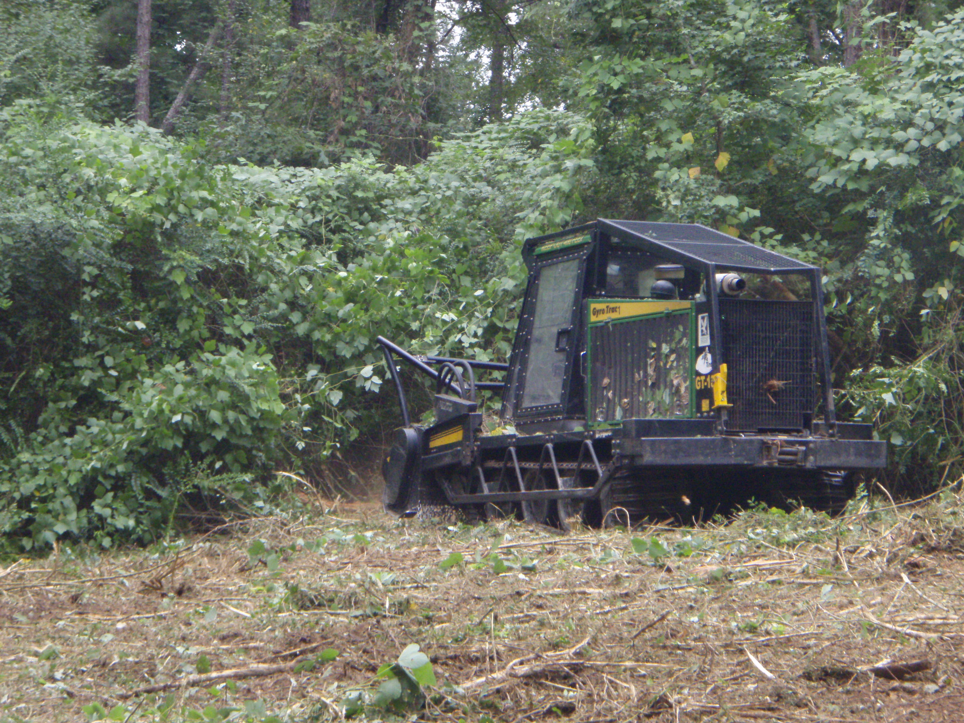 A Gyrotrac Reduces Invasive Plants To Mulch