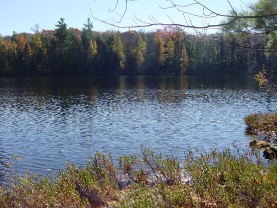 view of lake from the North Country National Scenic Trail