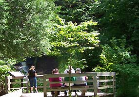 Visitors rest on the bench overlooking Munising Falls.
