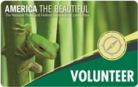 2018 Volunteer Pass with small green frog on a green plant