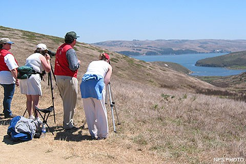 Two tule elk docents wearing red vests helping two visitors view tule elk through spotting scopes.