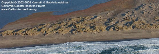 Coastal dunes west of Abbotts Lagoon. Detail of photo taken in November 2002 by the California Coastal Records Project. © 2002-2008 Kenneth & Gabrielle Adelman