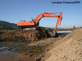 Excavator breaching a levee to allow tide waters to flood the Giacomini Wetlands on Sunday, October 26, 2008.