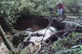 Blown-out culvert on Bear Valley Trail, 12/31/05