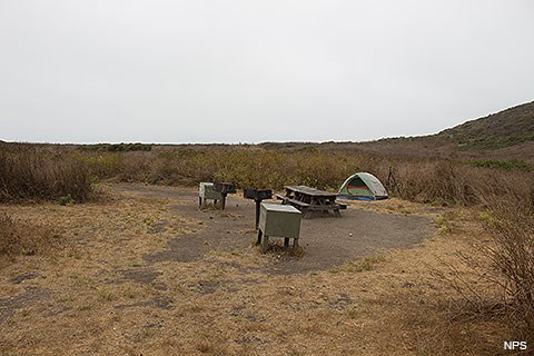 A campsite with a two-person tent, two wooden picnic tables, two green food storage lockers, and two charcoal braziers surrounded by tall annual weeds.