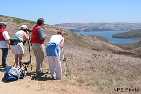 Tule Elk Docents with visitors at Windy Gap, Tomales Point, Point Reyes National Seashore