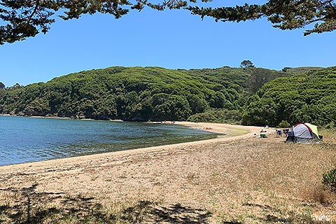 A small tent is set up above a sandy beach that bends to the left in the distance. Calm water in a bay is on the left, a forest on the right.