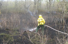 A firefighter with a hose sprays a smoldering log