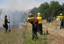 Three firefighter in yellow and green stand on the edge of a burnt smoky area with rakes and flappers.