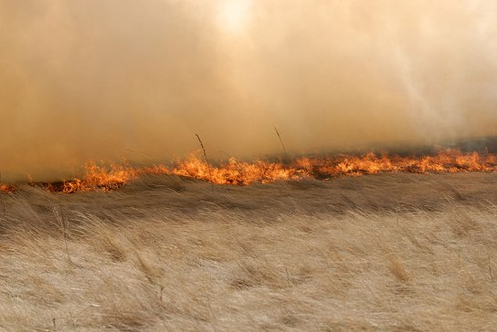 Image of a fire on the prairie.