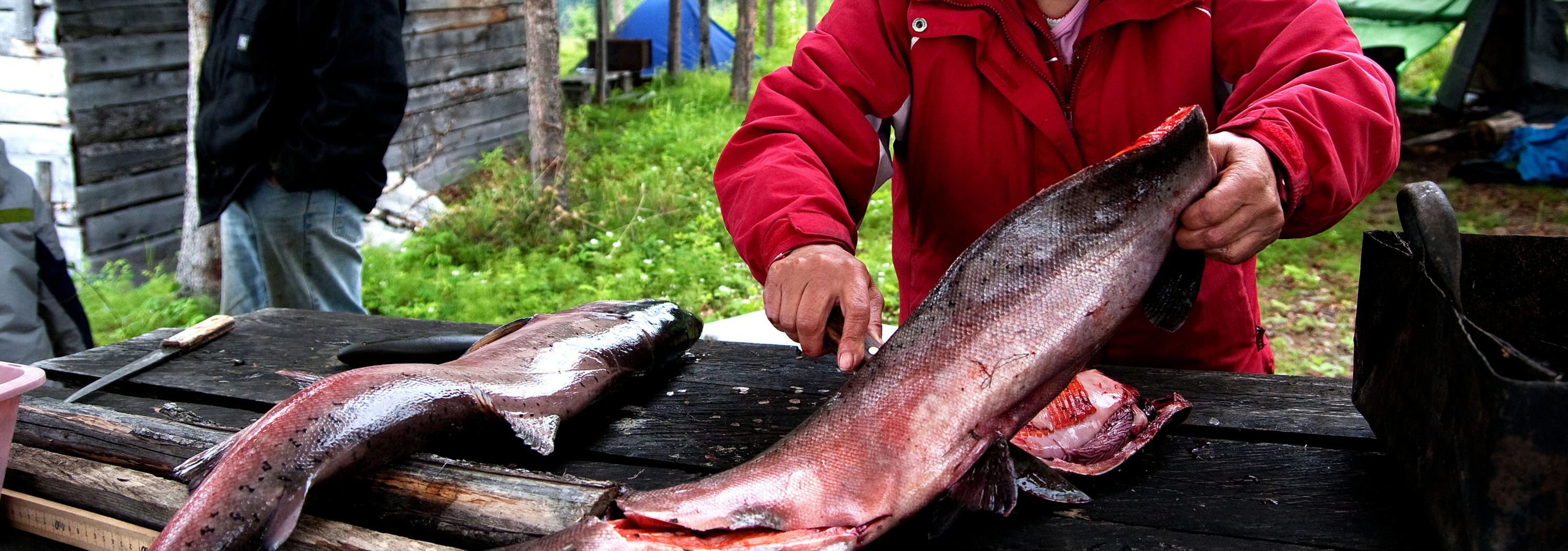 A woman cleans a fish.