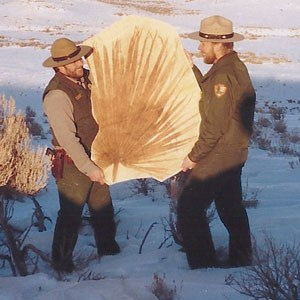 rangers holding large palm frond fossil