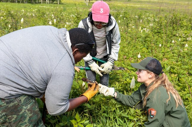young people look at a plant held by an NPS employee in a field