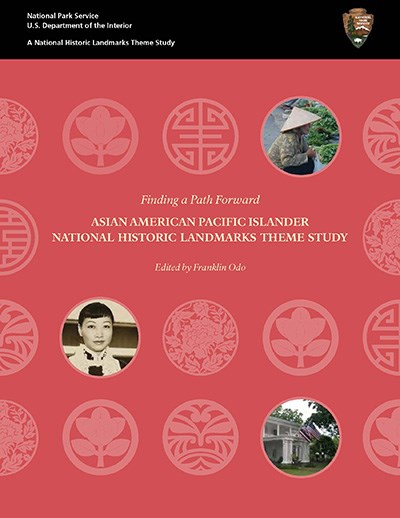 front cover of the AAPI theme study