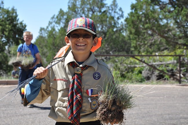 Volunteer Scout from Troupe 640 helps with re-vegetation project