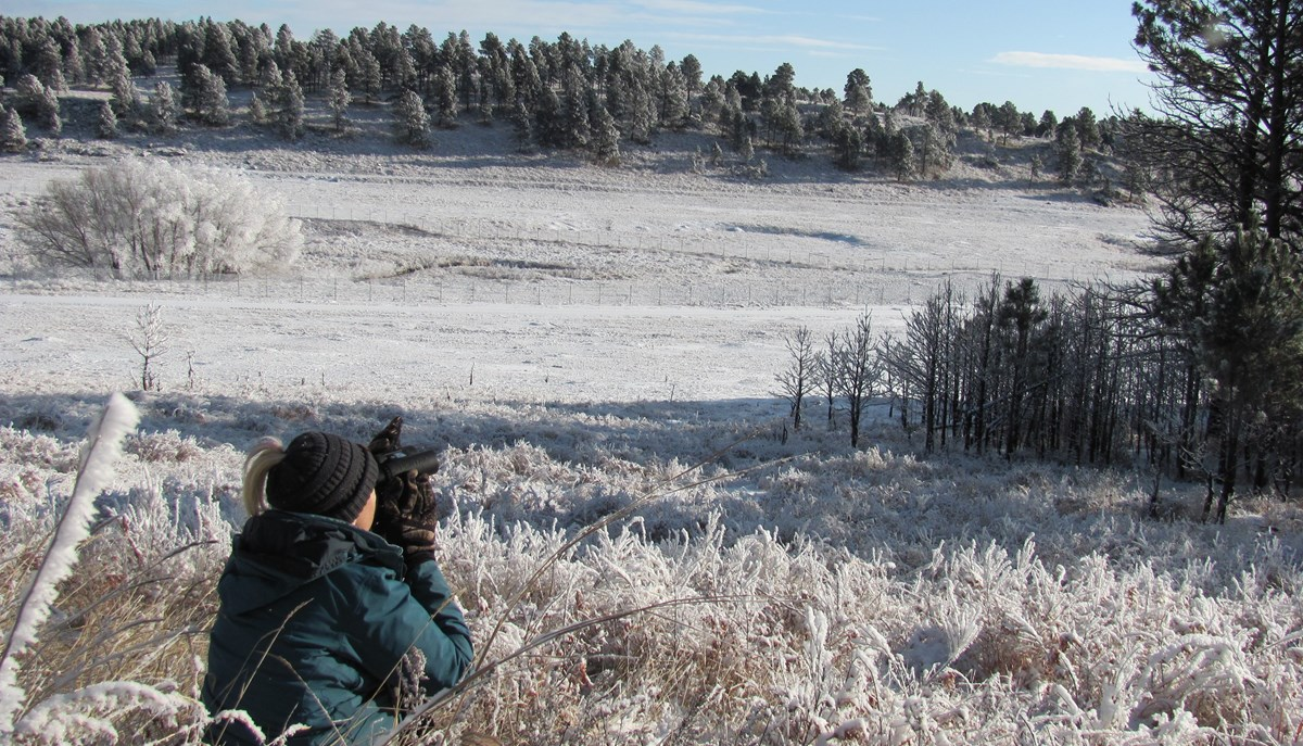 a woman in a winter coat crouching in the snowy prairie looking through binoculars at a wintry landscape
