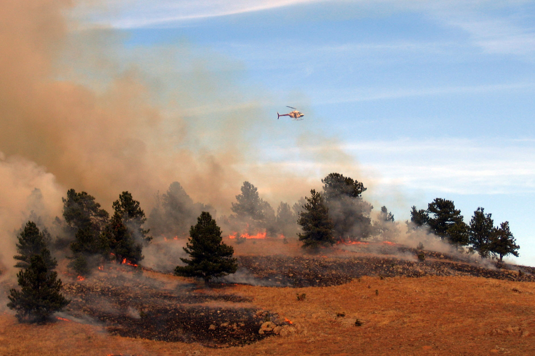 Wind Cave Plans to Use Prescribed Fire to Help Maintain a Healthy Forest
