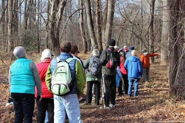 A group of hikers on a trail in the woods with a hike leader pointing at something