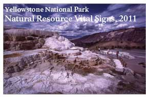 The cover of the 2011 Vital Signs Report highlights the Mammoth Terraces.
