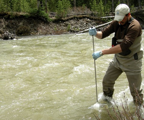 A man in waders holds a long stick with a cup on the end in the middle of a river