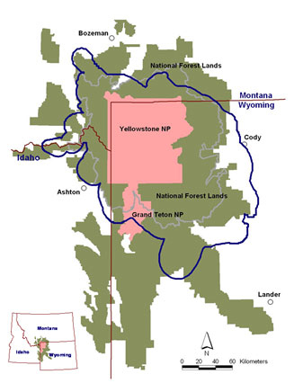 Map of grizzly bear distribution in the Greater Yellowstone Ecosystem.