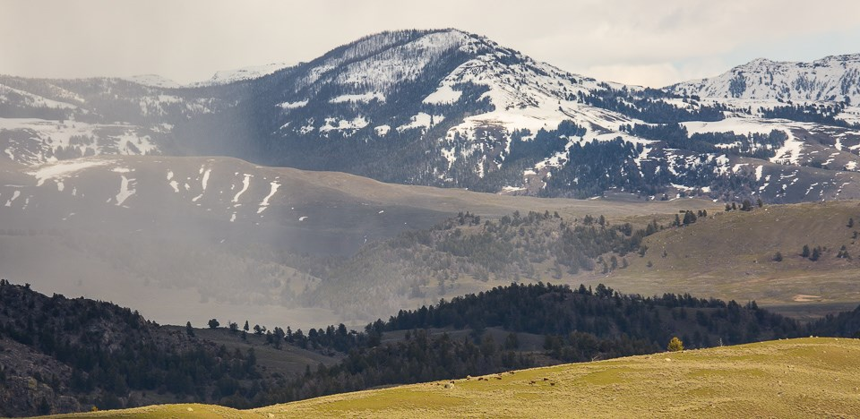 Spring snow flurries over Lamar Valley