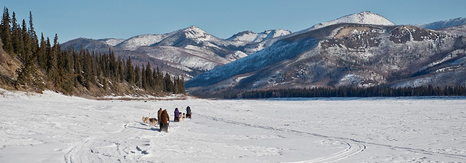 Mushers and dog teams mushing on the Yukon River and mountains rising above the river ice.