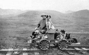 Historic photo of Johnson and dogs riding a dog powered rail cart.