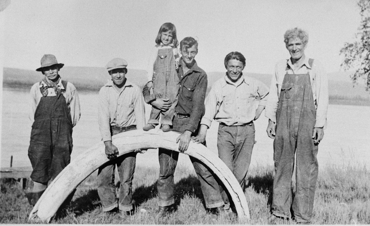 The Biedermans and friends with a mammoth tusk near the Yukon River circa 1930s